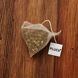Pluck Harvest Mint Tea