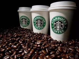 Starbucks or Planet Coffee Calgary