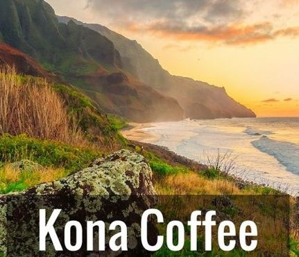 Kona Coffee Hawaii's Finest